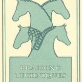 Picture of Braiding Techniques DVD