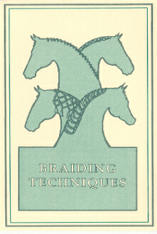 Picture of Braiding Techniques DVD