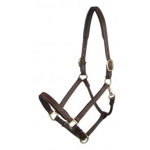 Picture of leather headcollar