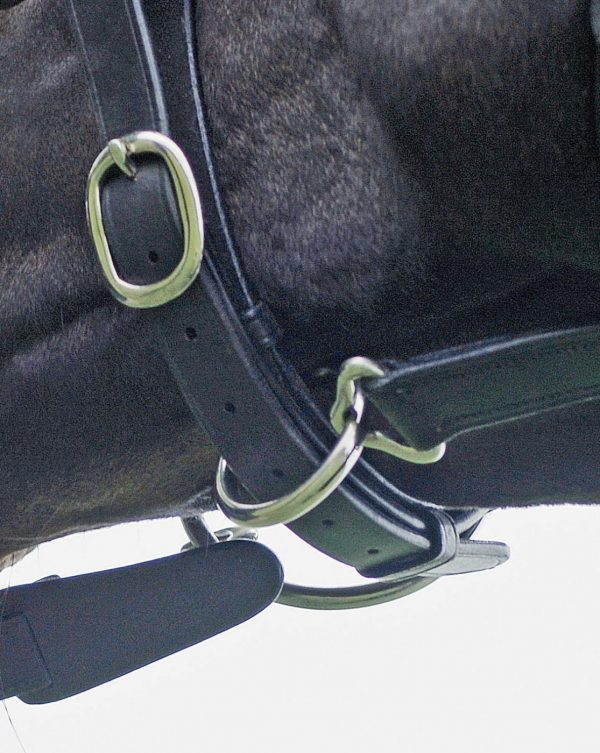 Picture of underneath hacking bridle