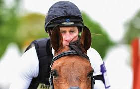 Picture of cambox eventing