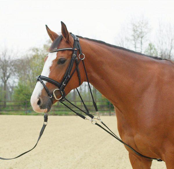 Picture of de Gogue training aid