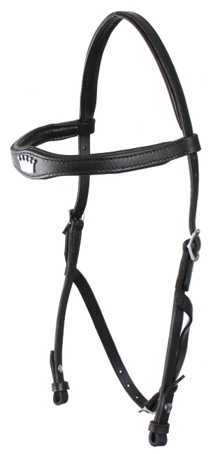 Picture of hackamore headstall
